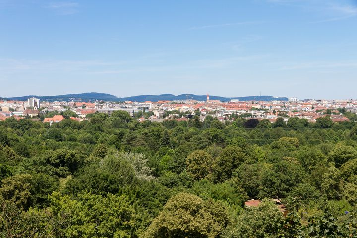Vienna view - Mikes gallery