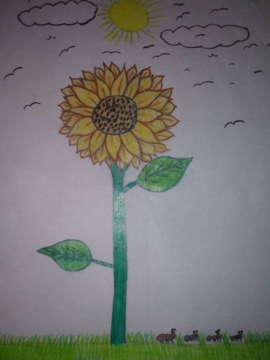 Sunflower with ants - Art by dawn