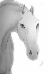 Intense Stallion