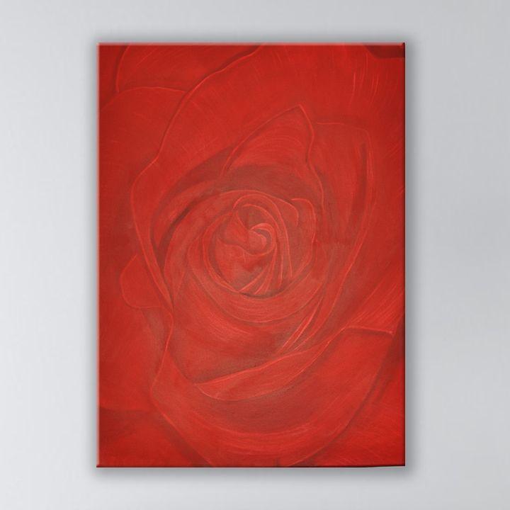 Red rose - Asad Jalal