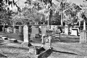 Christ Church Cemetery St. Simons Ga