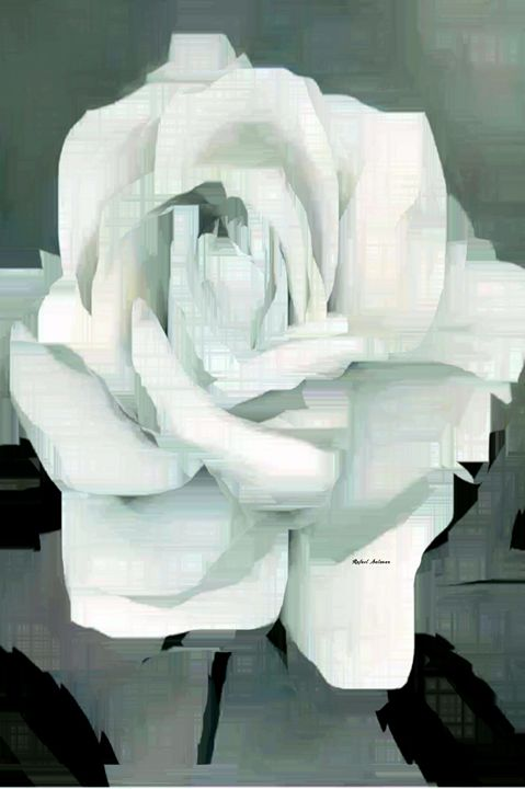 Flower 9217 - Rafael Salazar