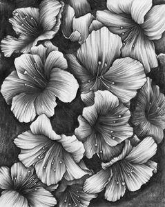 Rhododendron - Botanicals