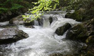 Appalachian rivers.