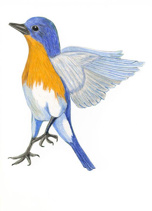 Blue bird - samsartplace