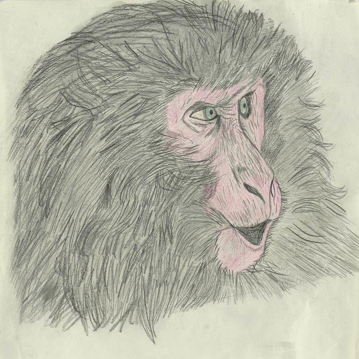 Snow monkey - samsartplace