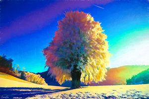 Colorful Dream Tree