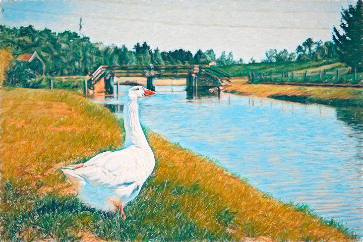 River Goose - Covester
