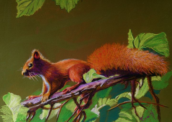 Squirrel - TinaH