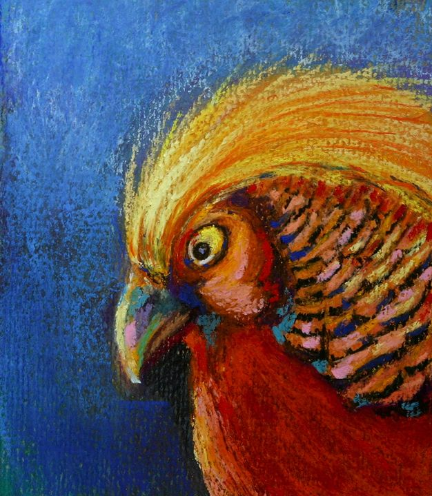 golden pheasant - TinaH