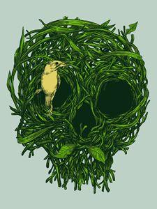 Skull Nest - Carbine