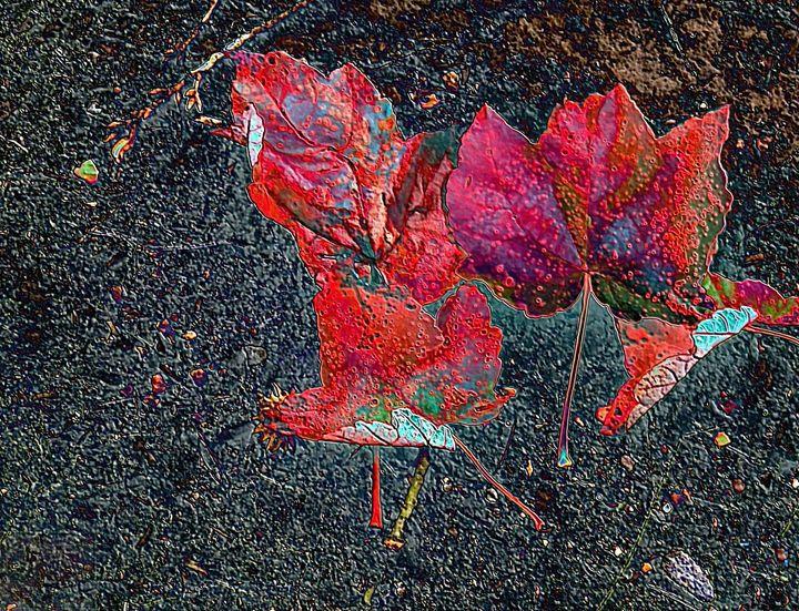 Leaves in Motion - Gene K