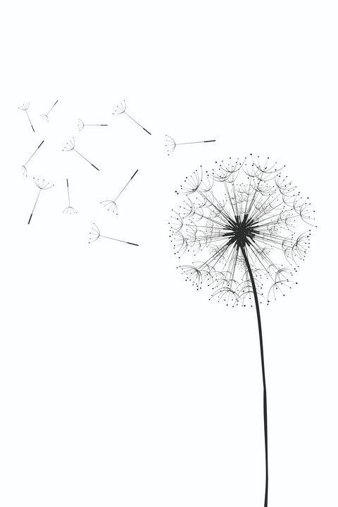 Dandelion - Tanya Creations