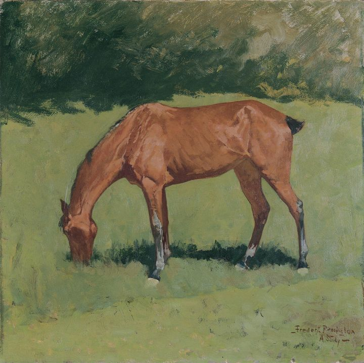 Frederic Remington~A Study - Old master