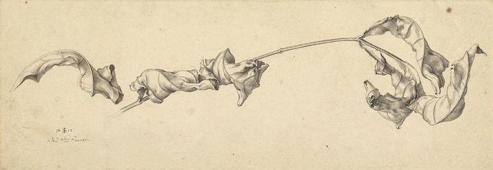 Julius Schnorr von Carolsfeld~A Bran - Old master