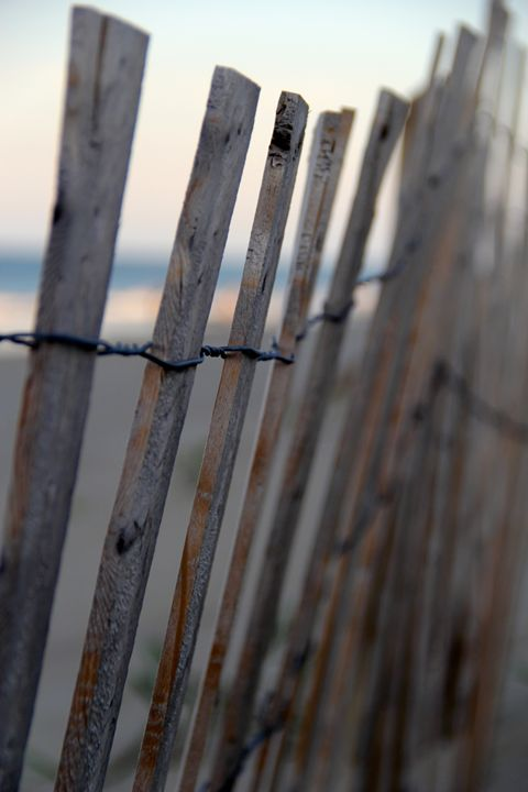 Beach Fences - Snapshots of a Life