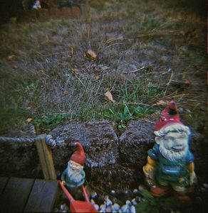 Where Gnomes Roam