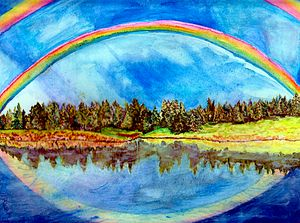 Reflective Forest and Rainbows