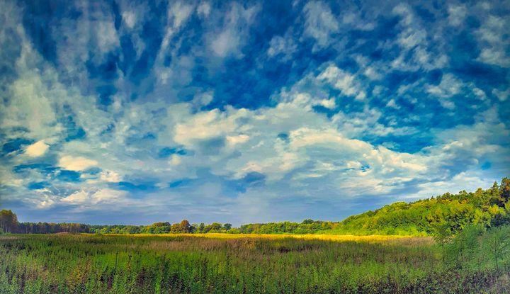 Sky and Meadow - Brain Art