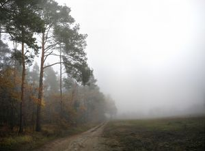 Misty morning in October.