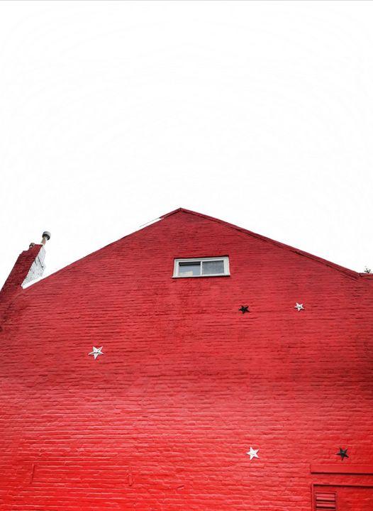 Red House, Washington DC - Brain Art