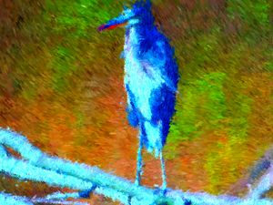 Blue Herons - Museum of A Lot of Art MOLOA