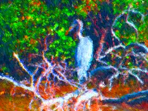 Herons 2 - Museum of A Lot of Art MOLOA