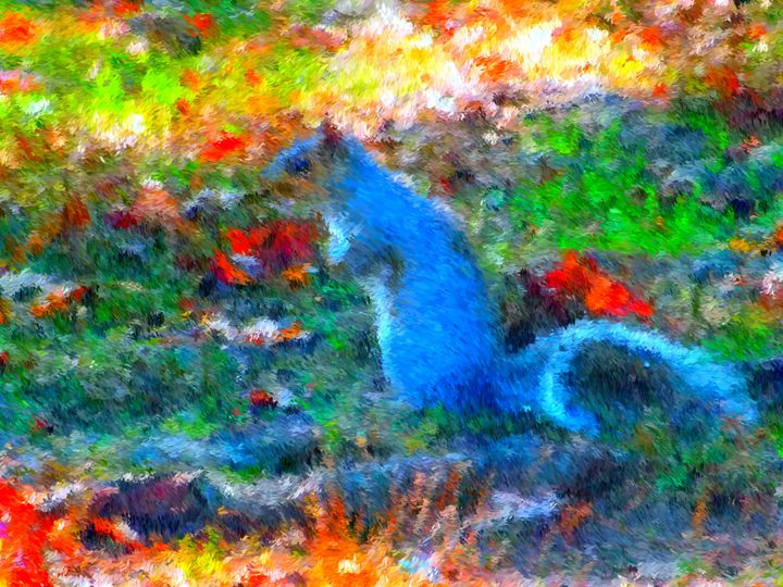 Squirrel 2 - Museum of A Lot of Art MOLOA