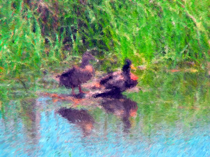 Ducks Waiting - Museum of A Lot of Art MOLOA