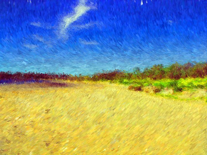 Beach Field - Museum of A Lot of Art MOLOA