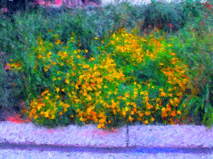 Yellow Flower Bush - Museum of A Lot of Art MOLOA