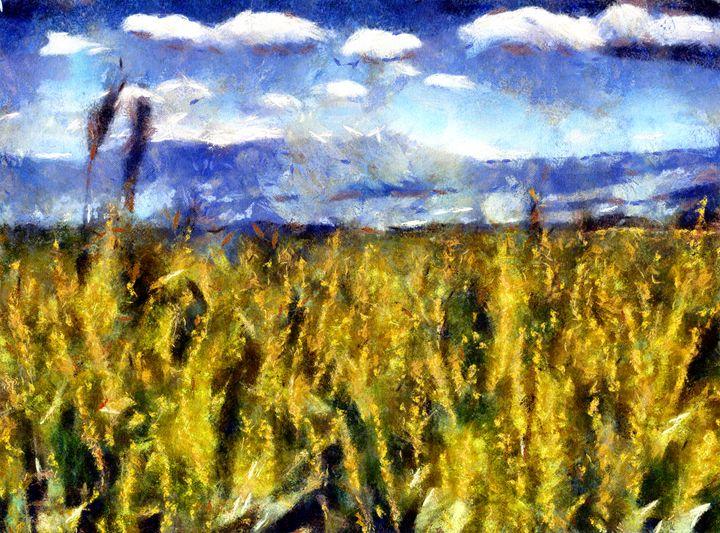 Corn Field - Museum of A Lot of Art MOLOA