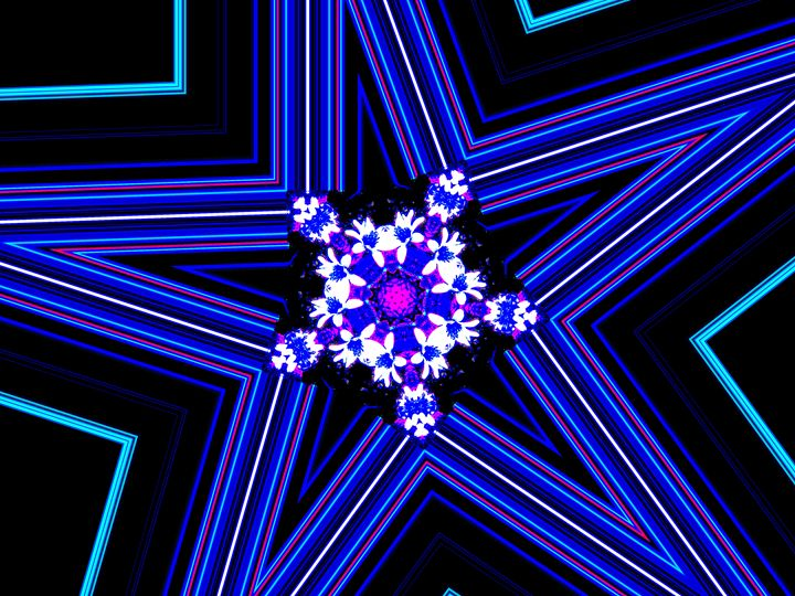 Blue Pajarita - Museum of A Lot of Art MOLOA