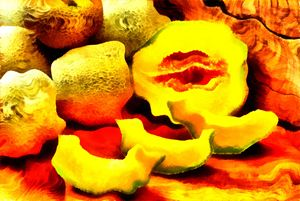 Crooked Cantalope - Museum of A Lot of Art MOLOA