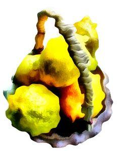 Lemon Wrinkle - Museum of A Lot of Art MOLOA
