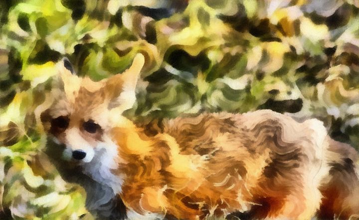 Curl Fox - Museum of A Lot of Art MOLOA