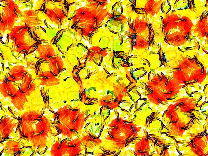 Orange Field - Museum of A Lot of Art MOLOA