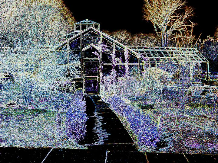 The Blues House - Museum of A Lot of Art MOLOA