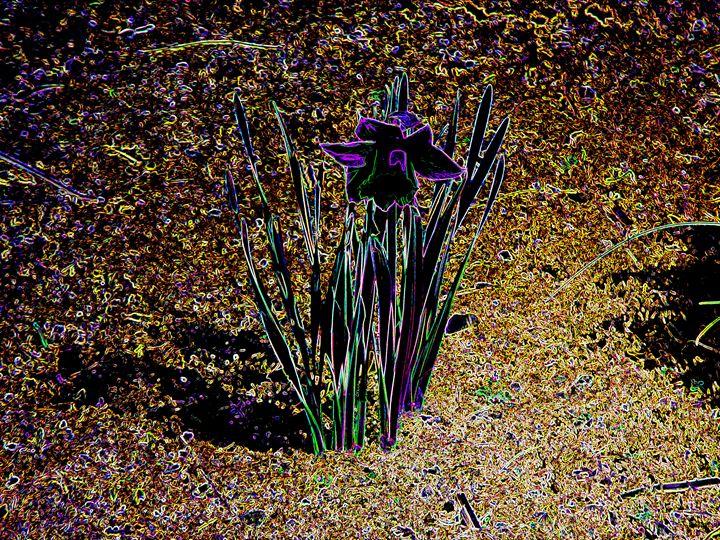 Purple Glow 3 - Museum of A Lot of Art MOLOA