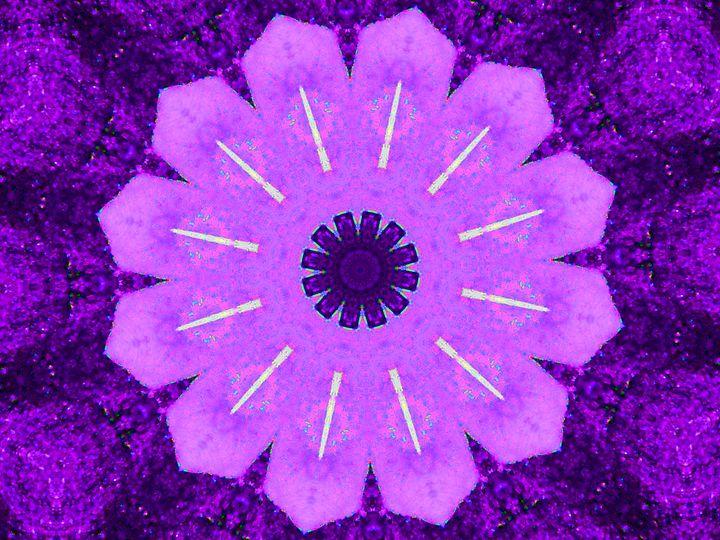 Purple Variety - Museum of A Lot of Art MOLOA
