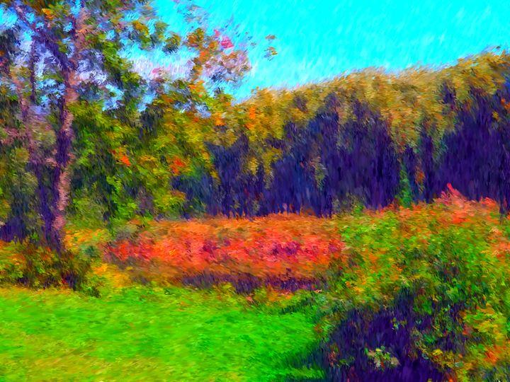 Marsh Overlook - Museum of A Lot of Art MOLOA