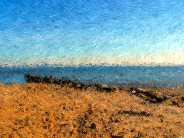 Beach Sand Wall - Museum of A Lot of Art MOLOA