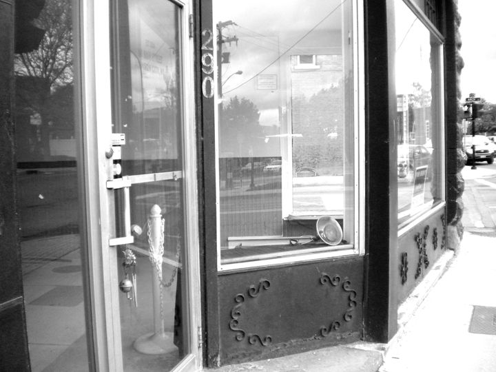 Shop - Michelle Benedett