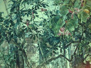 Magnolia Minuet