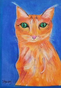 Tangelo Cat