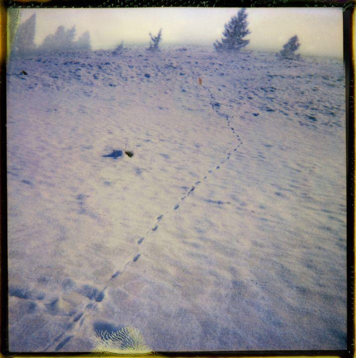 Pas dans la neige - Helgorsky