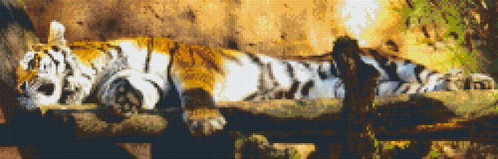 Power Nap Tiger MicroMosaic - Andrew Hay