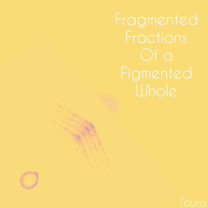 Fragmented fractions - Perception Art HeArt & Soulé
