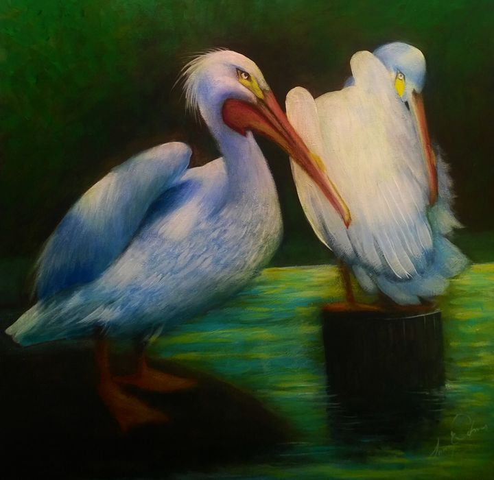 white pelicans - l&l art
