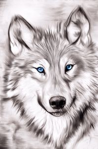 Spirit Wolf - Karen Scotting Designs